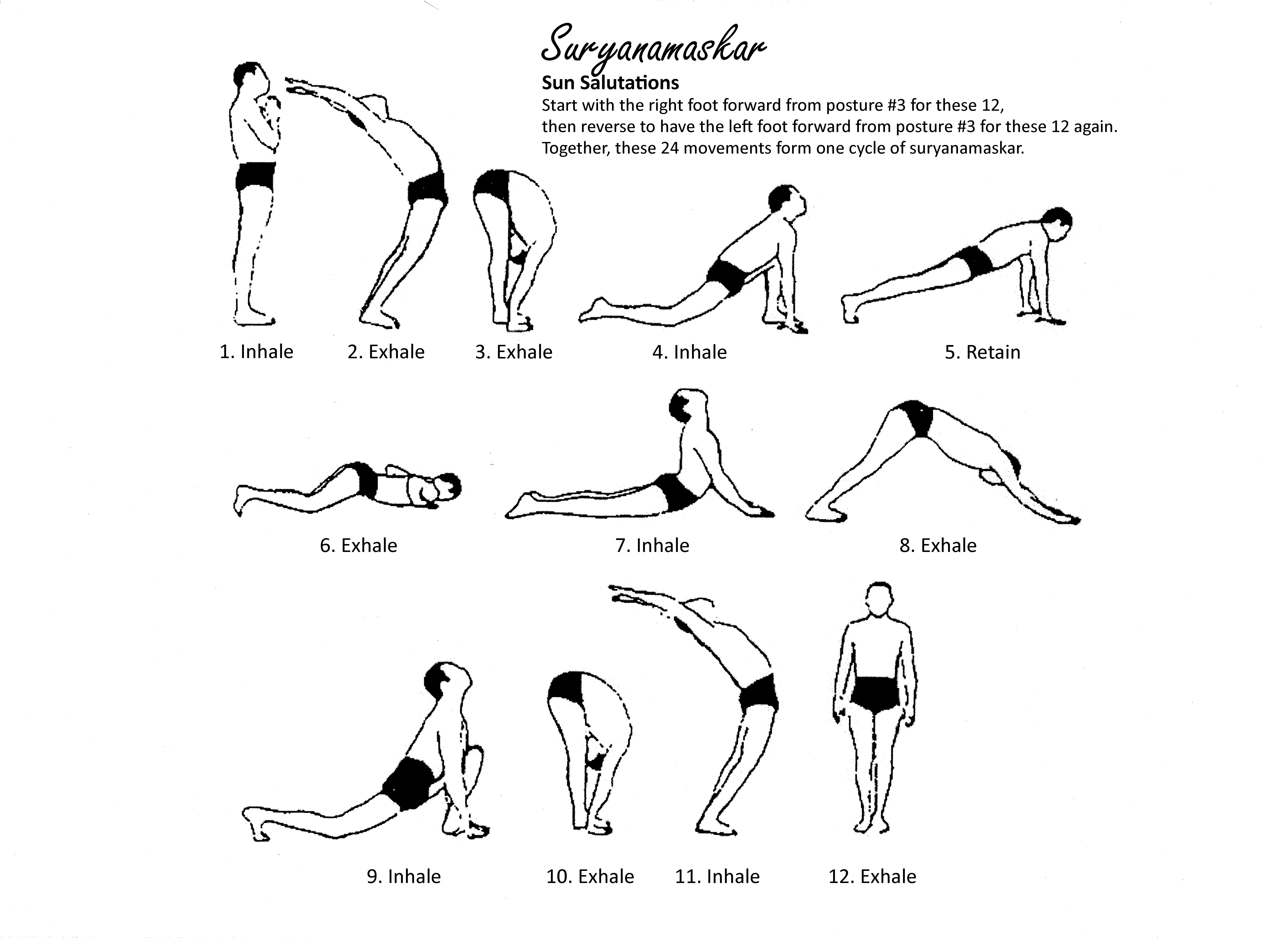 Suryanamaskar Chart